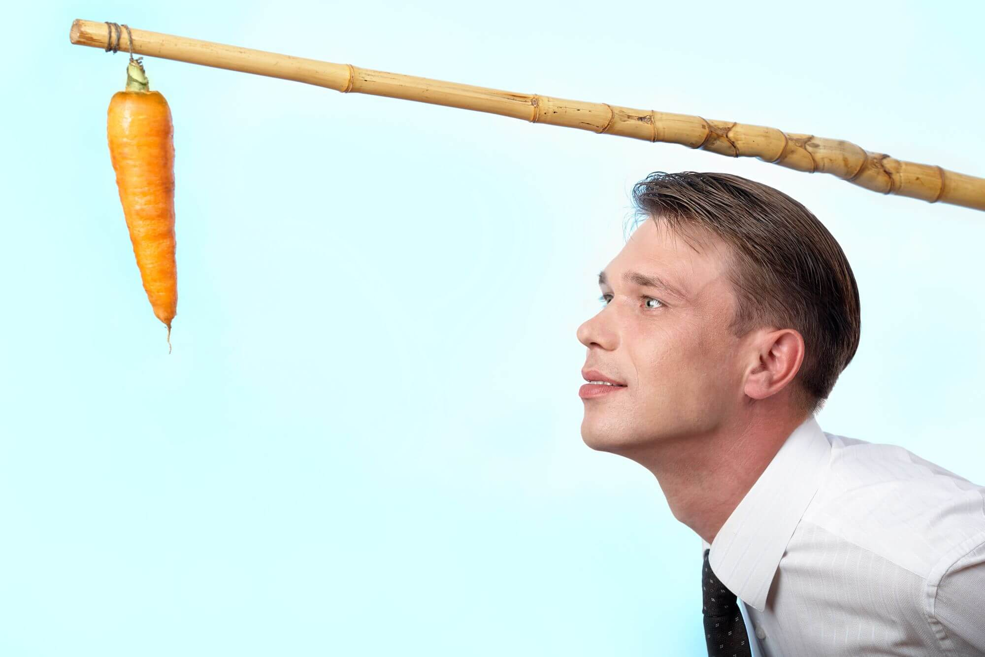 המקל או הגזר - ביקורת בונה בעידן גוגל לעסק שלי